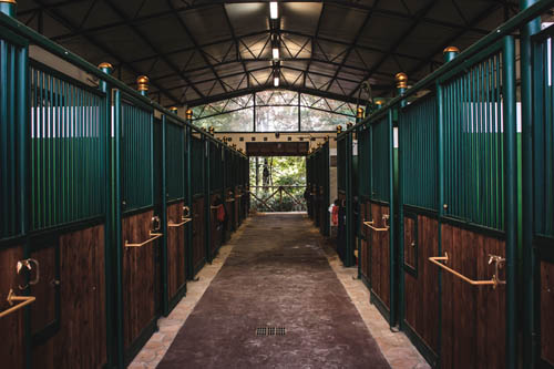 Handling riding club jumping la dolce vita for Box cavalli usati vendo